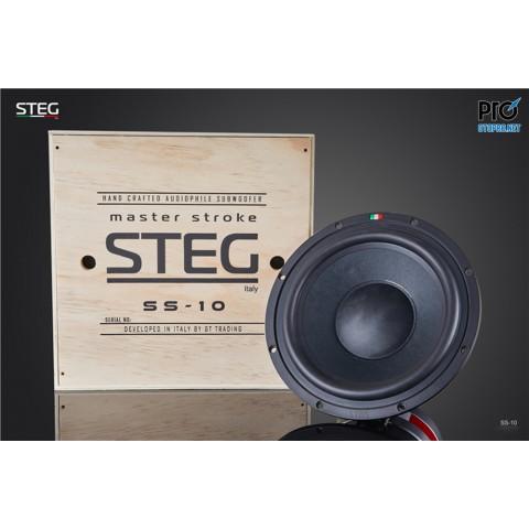 Loa sub hơi STEG SS10 WOOFER